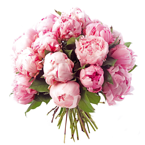 bouquet-pivoines1