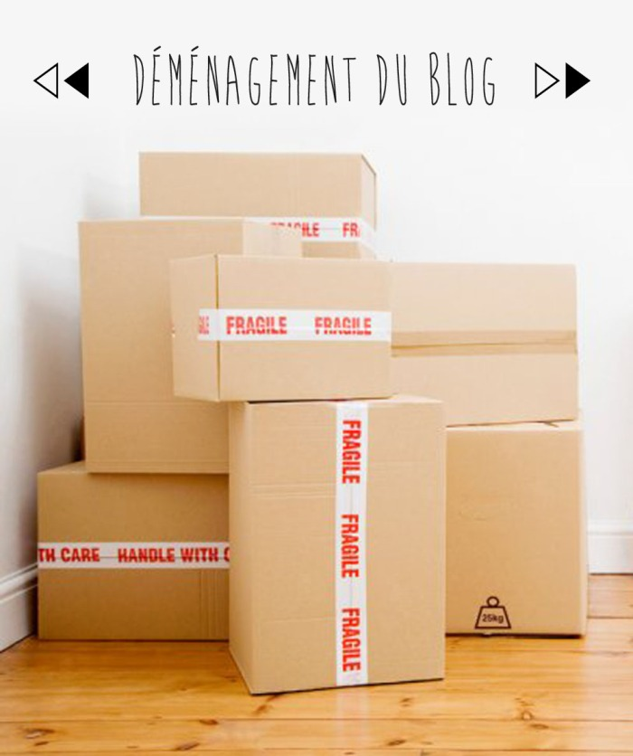 demenagementblog