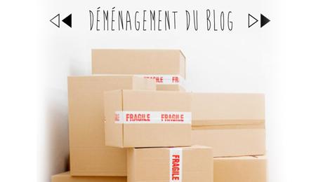 vignette-demenagementblog